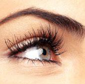 lash-and-brow-tint